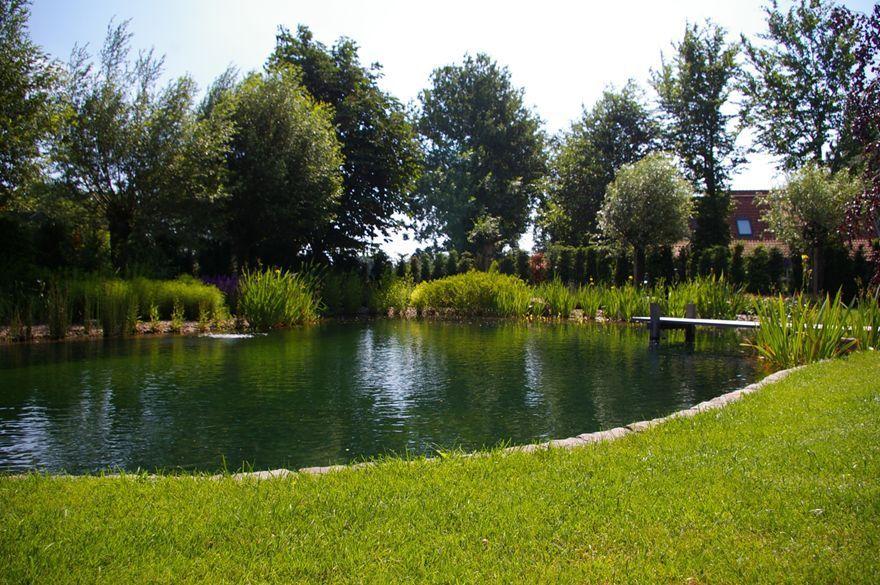 Zwemvijver lichtenvoorde zwemvijver expert de watermolen for Vijver laten aanleggen